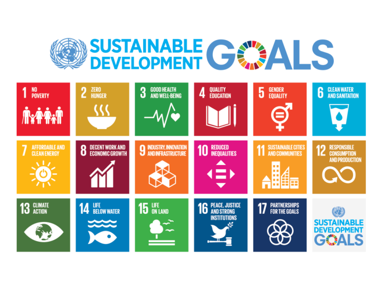 1024px-sustainable_development_goals
